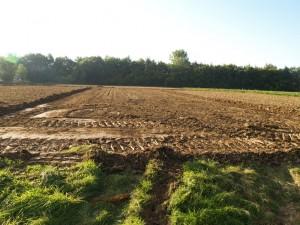Die Flächen wurden markiert. Jetzt wird der Mutterboden abgeschoben.