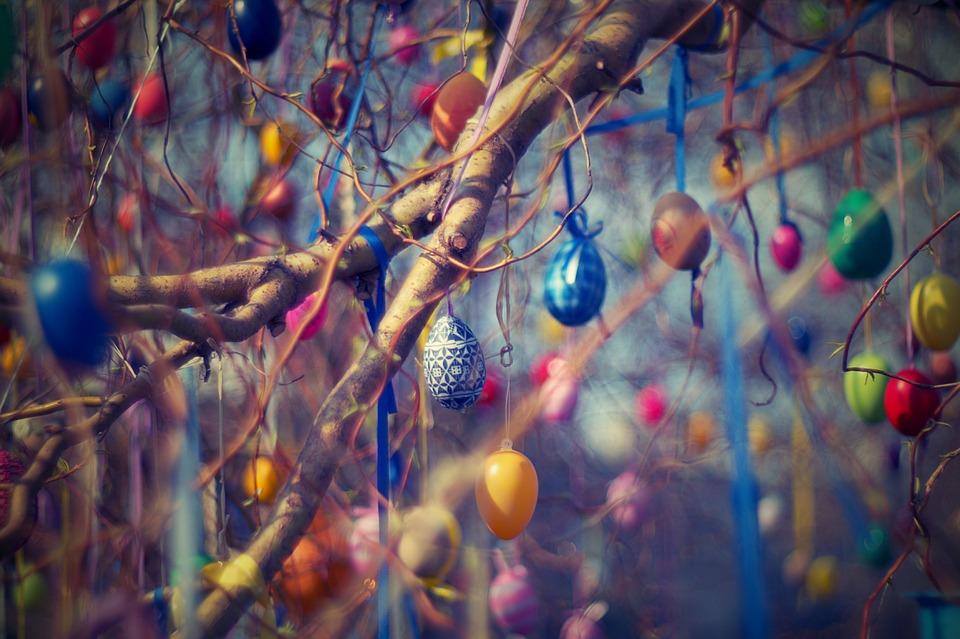 Bunte Eier an einem Strauch